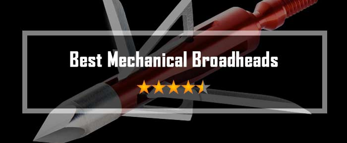 Best Mechanical Broadheads