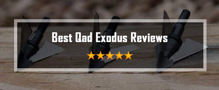 Qad Exodus Reviews