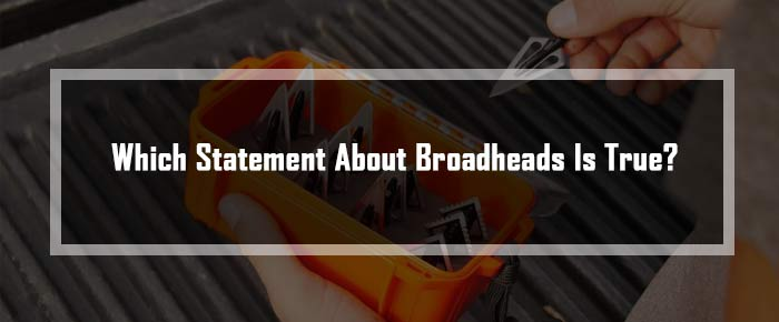Which Statement About Broadheads Is True