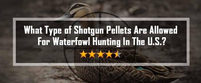 What Type of Shotgun Pellets Are Allowed For Waterfowl Hunting In The U.S.?