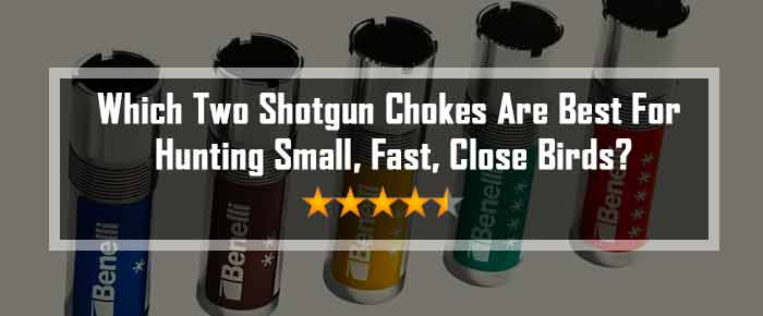 which two shotgun chokes are best for hunting small, fast, close birds