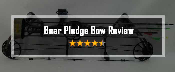 Bear Pledge Bow Review